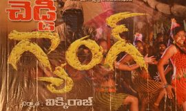 Cheddi Gang Box Office Collection