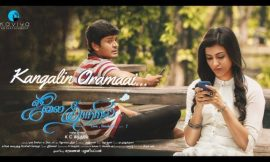 July Kaatril Box Office Collection