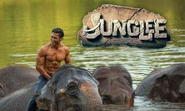 Jungle Box Office Collection Worldwide, India, Hit or Flop, Review, Rating, Wiki