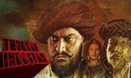 Thugs of Hindostan Box Office Collection, Hit or Flop