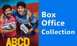 American Born Confused Desi Box Office Collection Worldwide, AP & TS, Hit or Flop, Review, Rating, Wiki