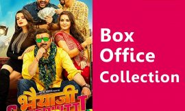 Bhaiaji Superhit Box Office Collection Worldwide, India, Hit or Flop, Review, Rating, Wiki