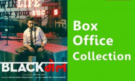 Blackmail Box Office Collection Worldwide, India, Hit or Flop, Review, Rating, Wiki