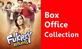 Fukrey Returns Box Office Collection Worldwide, India, Hit or Flop, Review, Rating, Wiki