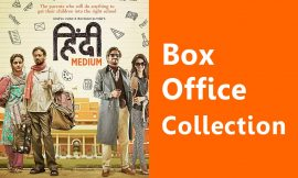 Hindi Medium Box Office Collection Worldwide, India, Hit or Flop, Review, Rating, Wiki