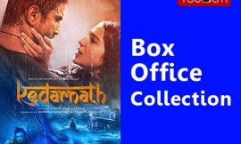 Kedarnath Box Office Collection Worldwide, India, Hit or Flop, Review, Rating, Wiki