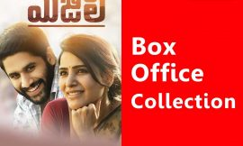Majili Box Office Collection Worldwide, AP & TS, Hit or Flop, Review, Rating, Wiki