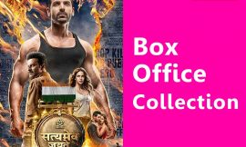 Satyameva Jayate Box Office Collection Worldwide, India, Hit or Flop, Review, Rating, Wiki