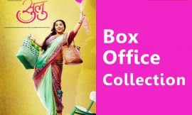 Tumhari Sulu Box Office Collection Worldwide, India, Hit or Flop, Review, Rating, Wiki