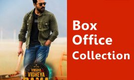 Vinaya Vidheya Ramaa Box Office Collection Worldwide, AP & TS, Hit or Flop, Review, Rating, Wiki
