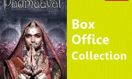 Padmaavat Box Office Collection Worldwide, India, Hit or Flop, Review, Rating, Wiki