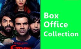 Stree Box Office Collection Worldwide, India, Hit or Flop, Review, Rating, Wiki